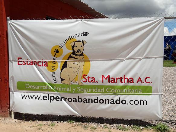 El Perro Abandonado in San Luis Potosi