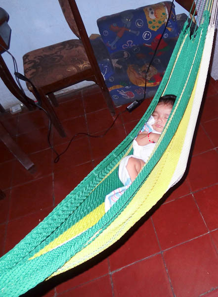 A Baby In A Hammock