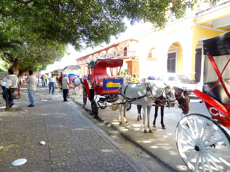 Horse Carriages In Center
