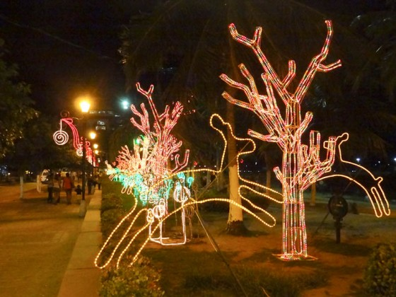 Christmas Decorations In Santa Marta