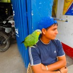 Photo Friday - Man And Parrot - Casma, Peru