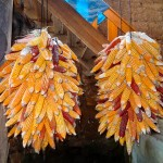 Photo Friday - Peruvian Corn - Yauya, Peru