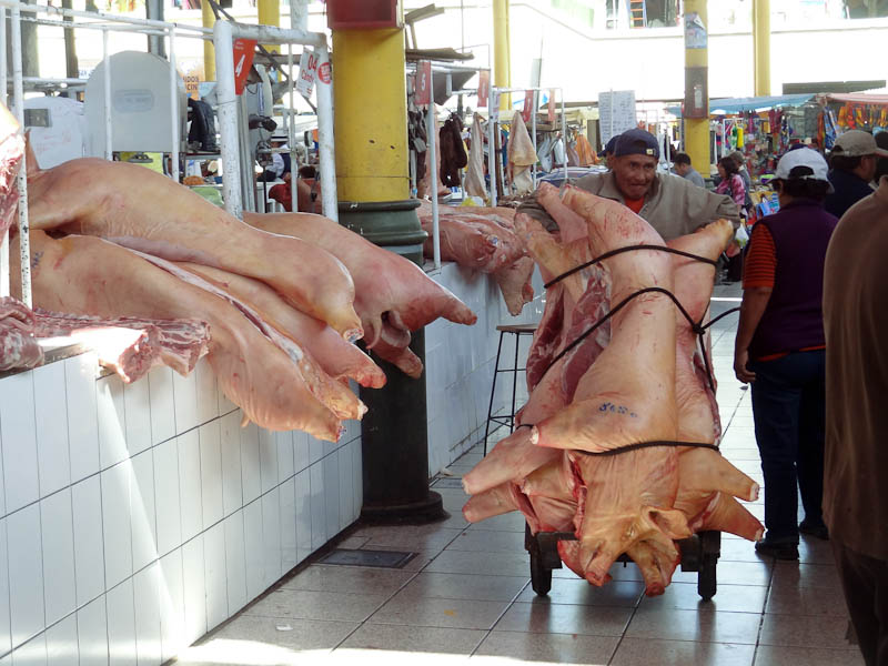 Arequipa Market - Pigs