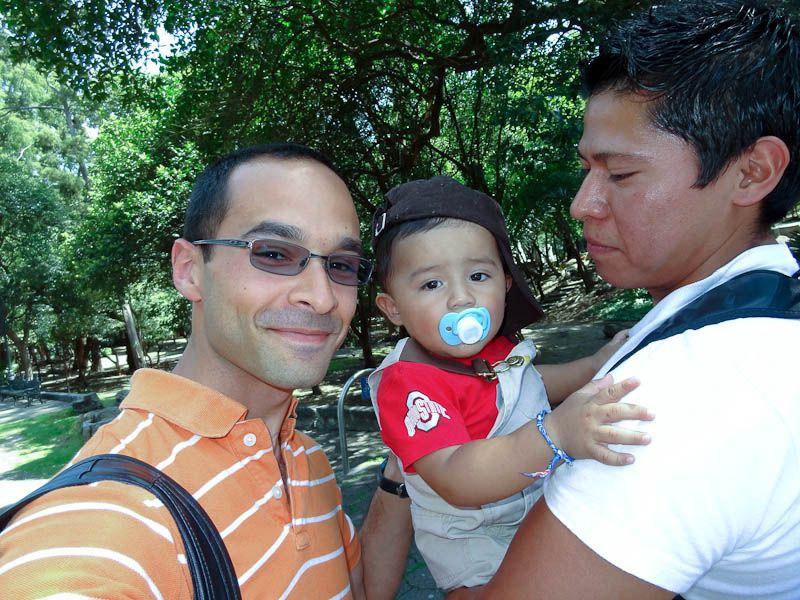 Baby Buckeye - Mexico City, Mexico