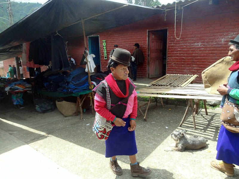 Guambiano Man - Silvia, Colombia