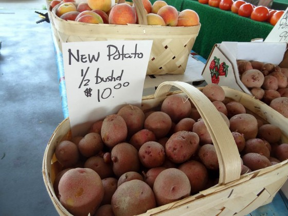 """New"" Potato?"