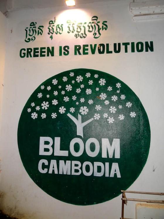 Bloom Cambodia