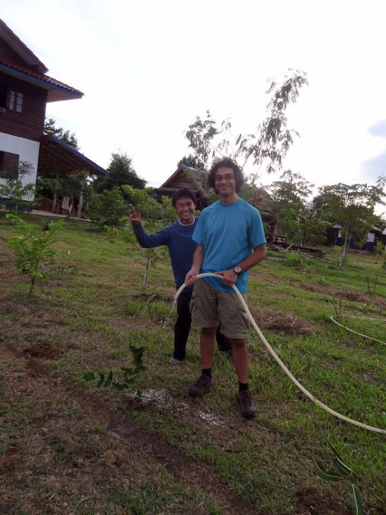 Watering The Newly Planted Trees