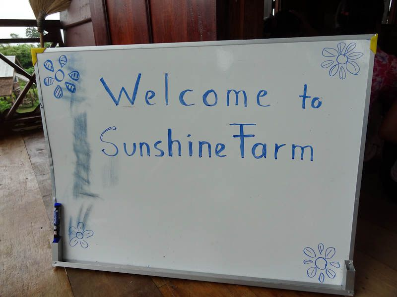 Welcome To Sunshine Farm!