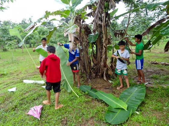 Collecting Banana Leaves