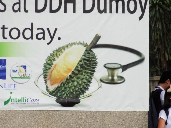 Doctor Durian