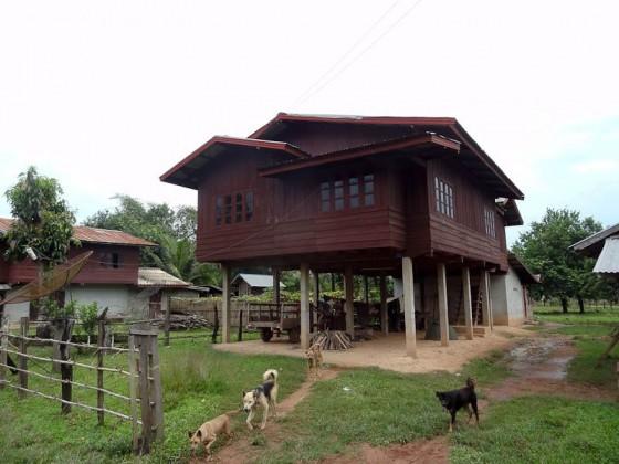 Homes On Stilts