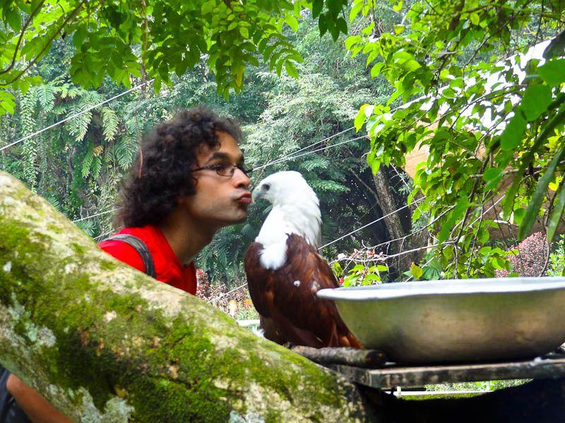 kissing an eagle