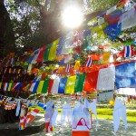 Photo Friday - Enlightened Flags - Buddha's Birthplace, Lumbini, Nepal