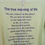 Photo Friday - The True Meaning Of Life From The Dalai Lama - McLeodganj, Dharamsala,...