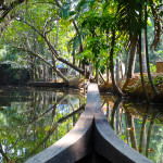 Photo Friday - Kerala Backwaters - Vaikom, Kerala, India