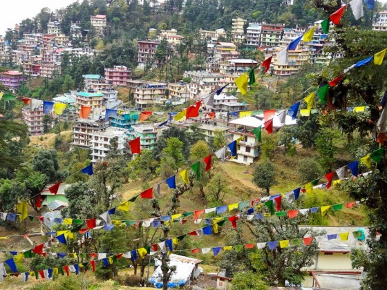 Buddhist Flags Against Dharamsala