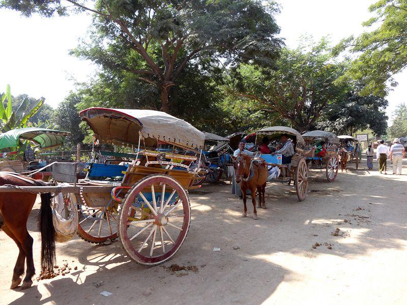 Lots Of Horse Carts