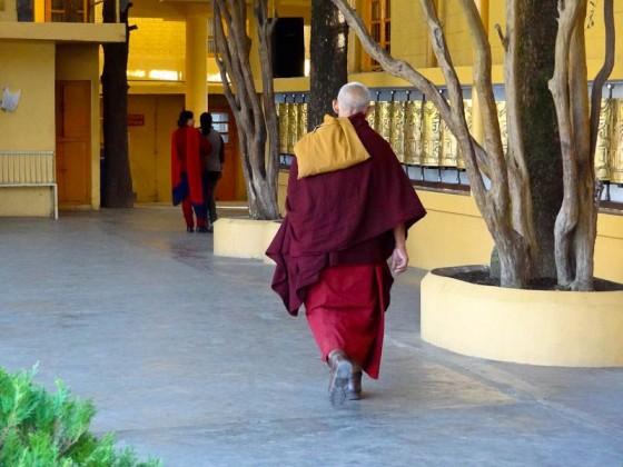 Monk At The Temple