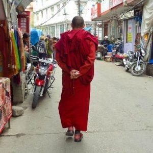 Monk In Dharamsala
