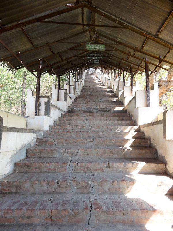 Over 300 Steps