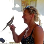 Photo Friday - Love At First Sight - Nicosia, Turkish Republic Of Northern Cyprus