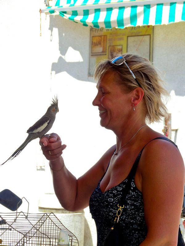 Love At First Sight - Taken 5-Jun-2013 - Nicosia, Turkish Republic Of Northern Cyprus