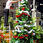Photo Friday - Christmas Tree - Addis Ababa, Ethiopia