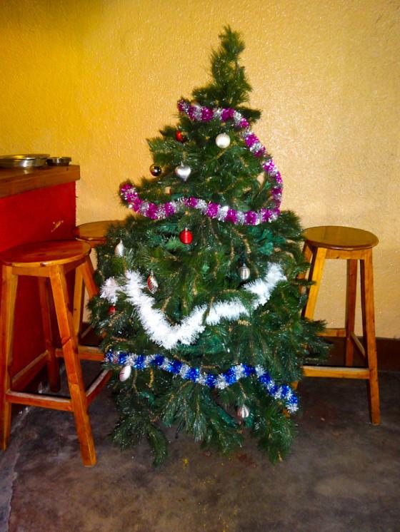 Christmas Tree In Burundi