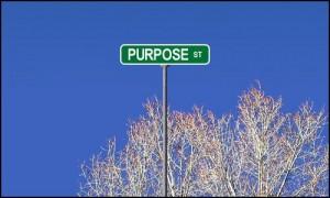Purpose Street