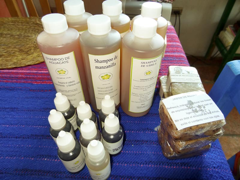 Natural Products Co-op In Chiapas