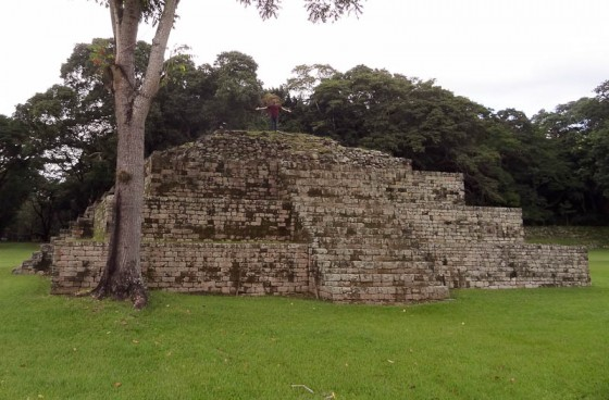 Standing On Top Of Copan Ruinas Pyramid