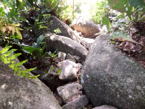 Climbing Over Stones