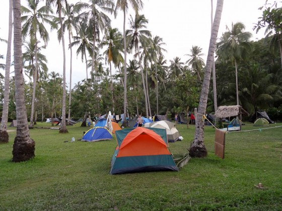 My Camp's Tents