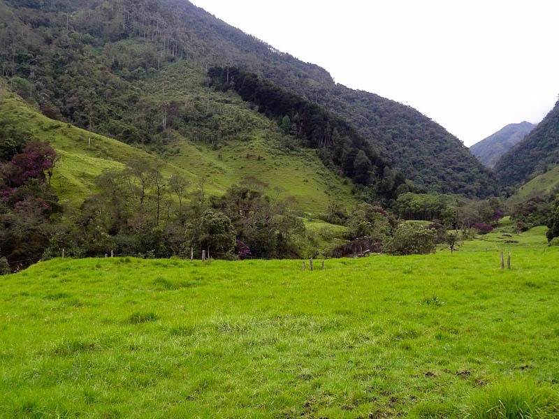 The Hike To Acaime