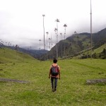 Alone In The Cocora Valley
