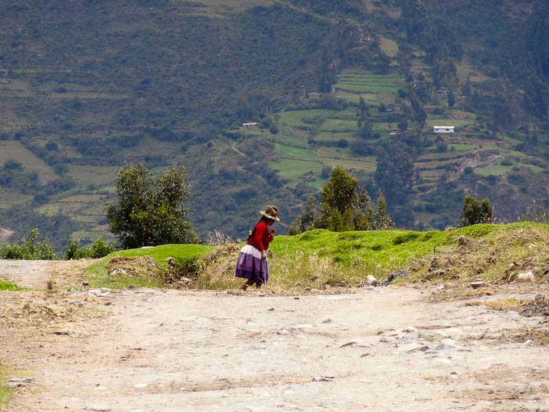Indigenous Woman And The Mountains