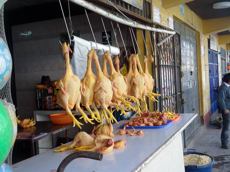 Where Chicken Comes From