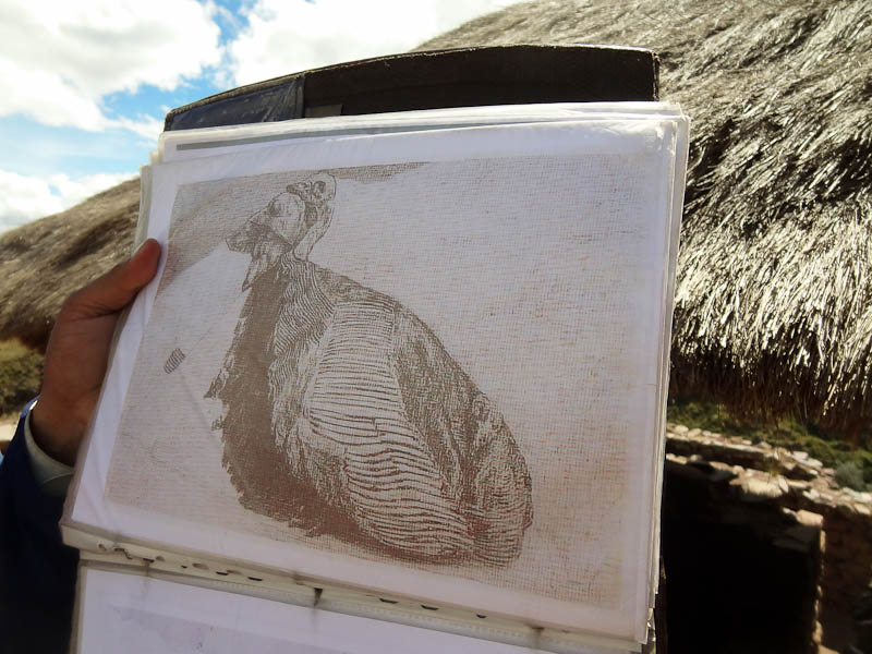 In The Shape Of A Partridge