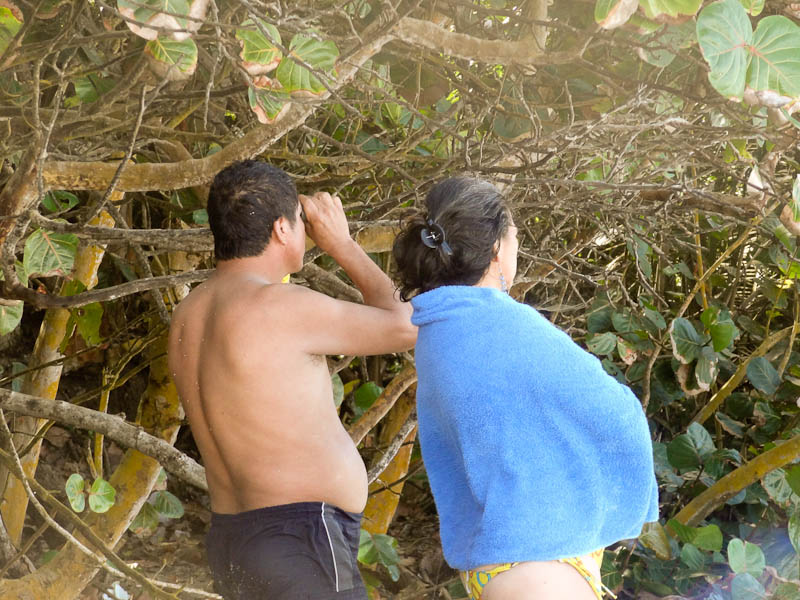 Looking At A Nude Beach With Binoculars - Tayrona National Park, Colombia