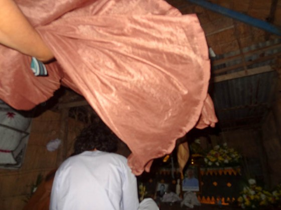 Lifting The Mosquito Net