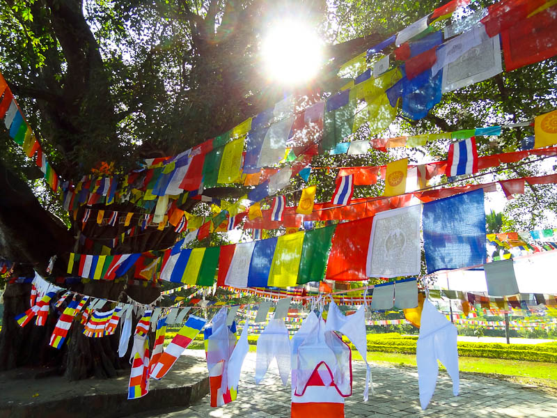 Enlightened Flags - Taken 1-Nov-2012 - Buddha's Birthplace, Lumbini, Nepal