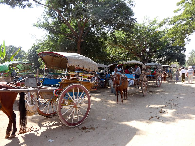 Lots Of Horse Carts