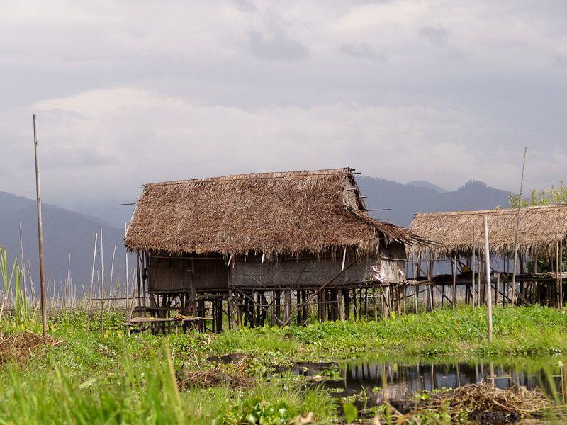 Rural Lake Life