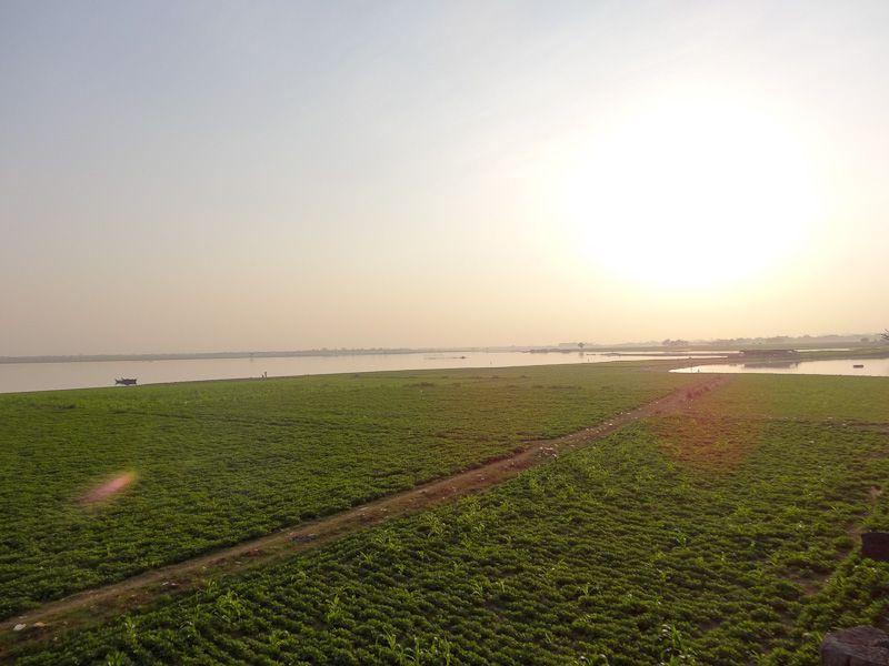 Sunbaked Fields