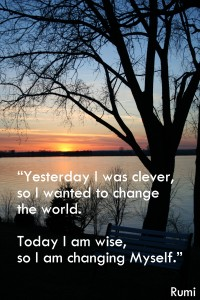 rumi wise clever change self