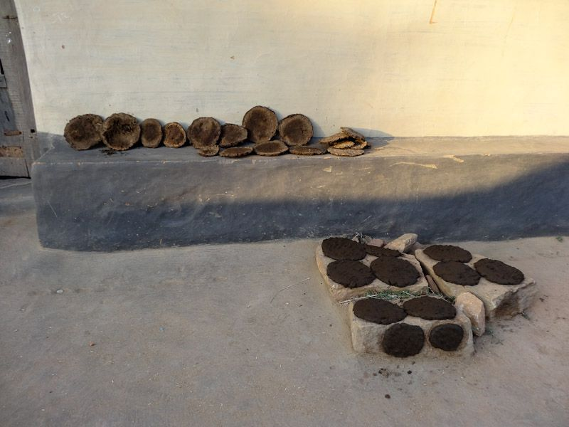 Rural India - Drying Cow Patties