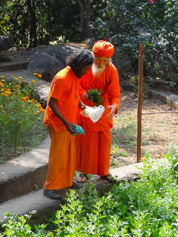 Monks In The Garden
