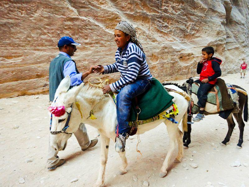 Bedouins On Donkeys