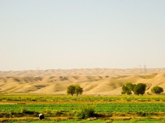 Desert Between Erbil And Sulaymaniyah